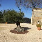 Photo of Domaine les Magasins