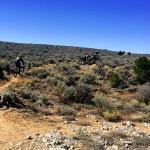 Rift Valley Trail thru the sage brush
