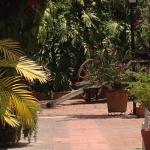 Foto de Hacienda La Noria