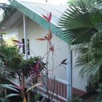 Side of Banana Cottage