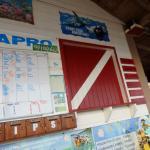 Seagrape Plantation Diveshop Foto