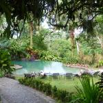 Pool in neighbour hotel, accessible for guests of Tirimbina Lodge