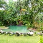 Pool of neighbour hotel - accessible for guests of Tirimbina