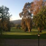 A view from the terrace of the Ojai Valley Inn, dinner at Olivella...gorgeous.