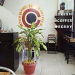 Foto de Coffee Berry