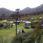 Photo of Cape Point Vineyards