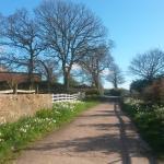 Strete Ralegh Farm Drive