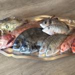 La pêche locale