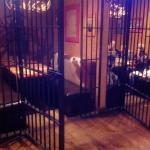 Cage style booth