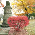 Standing Stone inthe Fall