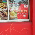 Photo of Charly Dog