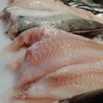 Lækker fersk fisk
