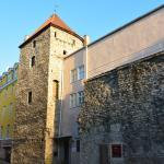 Эстонский музей театра и музыки