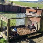 Fab farm with the friendliest animals