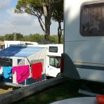 Camping Pinar San Jose Picture