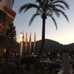 Photo of Viva Sunrise
