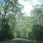 Leeuwin-Naturaliste National Park Photo