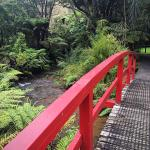 Photo de Rapaura Water Gardens