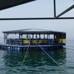 Floating pontoon bar