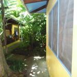 El acceso a la habitación pasando por un jardín selvático maravilloso