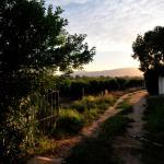 Augusta Kleinbosch Guest Farm Foto