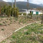 Photo of Terra di Solina