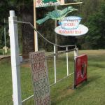 Billede af Bellbird Creek Cafe