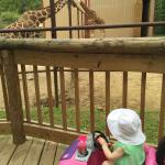 Norah is 1 and loved this visit especially the aviary and fish (Nemos).