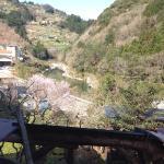 Photo de Momonga Village