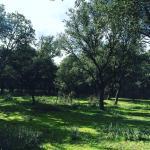 Foto de Caserio de Lobones