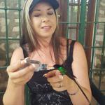 Feeding the humming bird