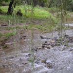 Las cabañas tienen acceso directo al arroyo que cruza Villa General Belgrano