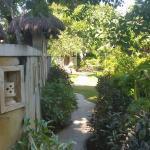 Garden through hotel