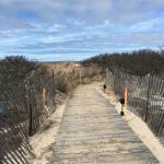 Walk to the beach..