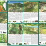 Guía Parque de Los Alcornocales