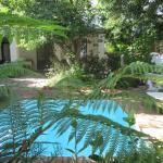 Our private garden and plunge pool