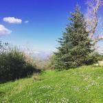 Photo of Alpe Cucco Turismo Rurale