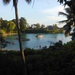 Mangrove Lodge Picture