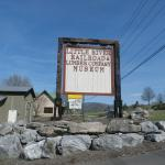 The Little River Railroad and Lumber Company Museum Foto