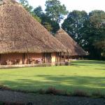 Sarapiquis Rainforest Lodge-billede