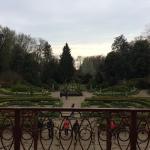 Photo of Villa Pisani