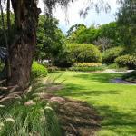 Vista al jardin del hotel