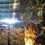Foto de Quality Inn Central Denver