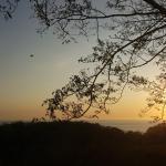 Rayos Del Sol Foto