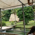 Turtle Tours Guam - Day Tours