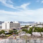 Make gorgeous and unforgettable memories in spring at Hilton Gyeongju