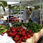 saturday local farmers market