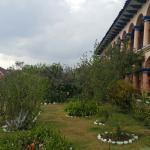 jardín de arboles frutales