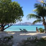 Paradise Resort Phi Phi Photo