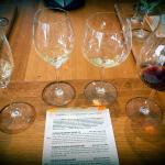 Foto de Boutique Wine Tours Tasmania